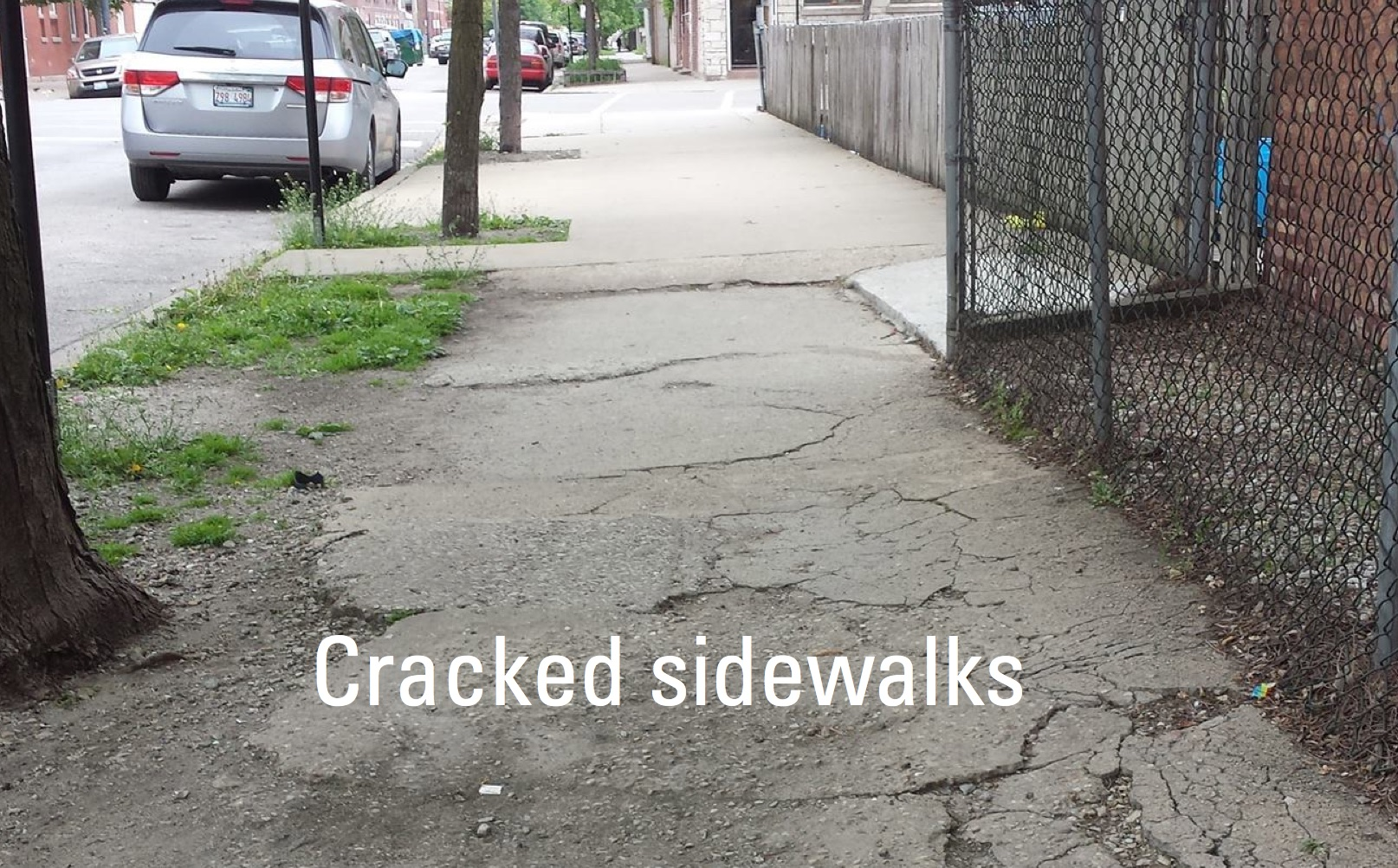 Cracked sidewalks